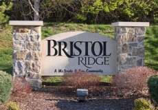 AMD shows off Bristol Ridge
