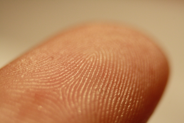 Fingerprint sensors fall below $5