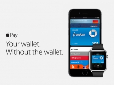 Apple Pay increases fraud