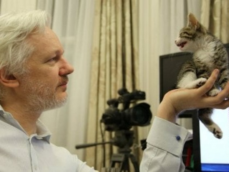 Julian Assange Appears in Ecuador Database, Spurring Citizenship Speculation
