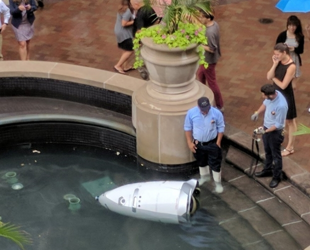 Security robot drowns itself