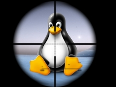 Linux malware went un-noticed for years