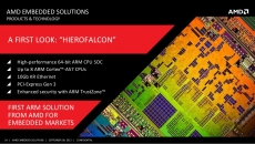 ARM chips no help to AMD