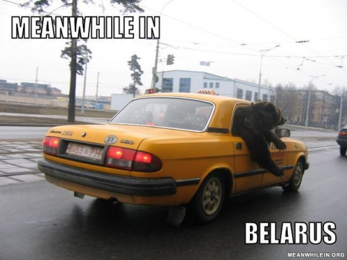 Belarus software experts fleeing the country