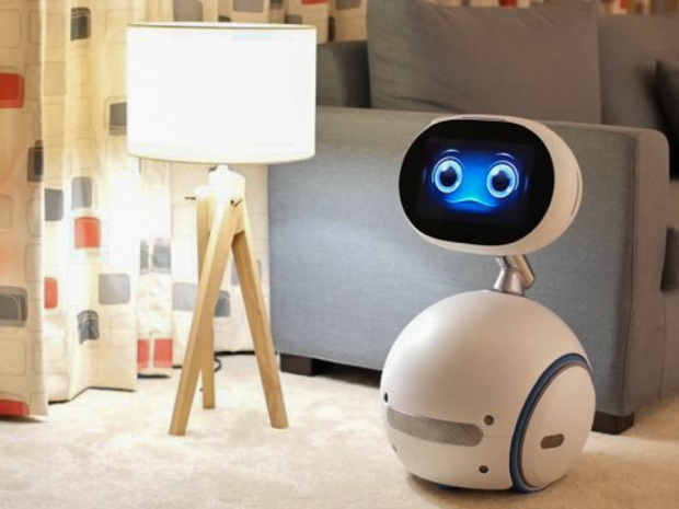 Consumer robotics may not see much demand next year
