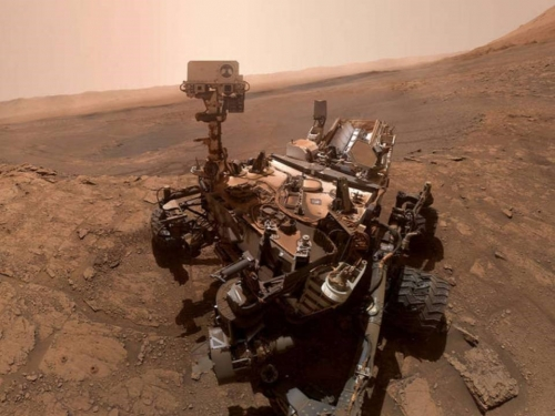 Software error stops curiosity