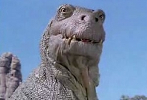 Intel shares plummet after server warning