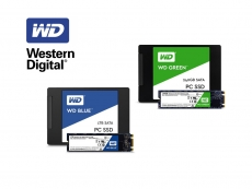 WD formally enters SSD market
